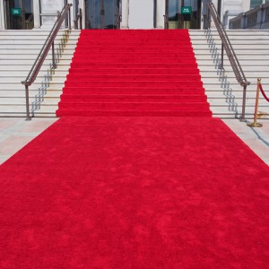 Red Carpet & Ropes Hire